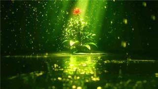 三维角色动画演示-植物生长