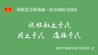 西安个人所得税缴纳流程软件宣传动画