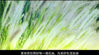 中石化企业形象宣传片