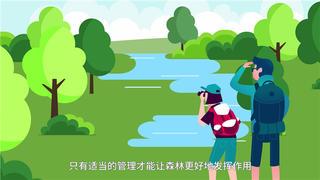 电装森林管理宣传动画